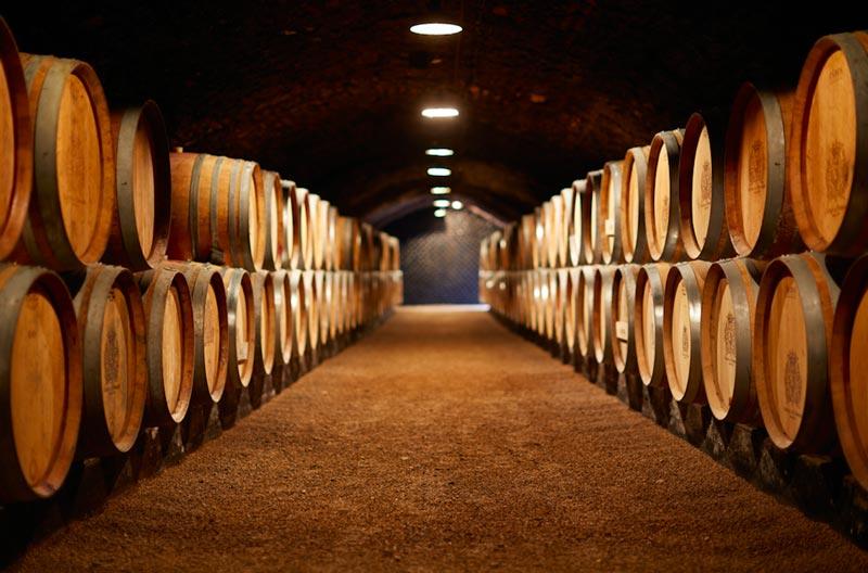 Wine-making in Jura